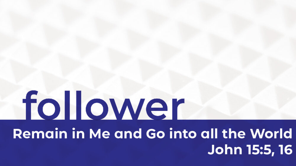 Follower | Remain in Me and Go into all the World Image