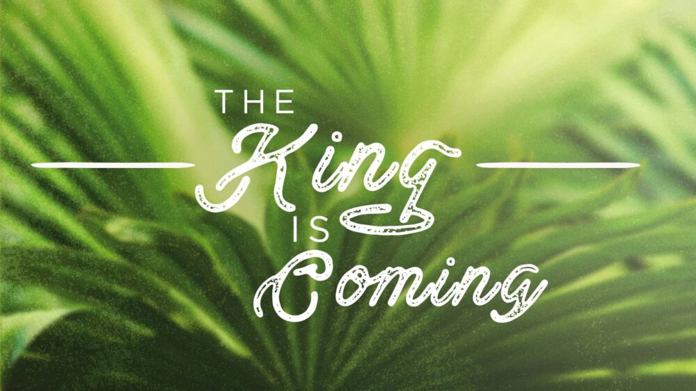 Zechariah | The King is Coming Image
